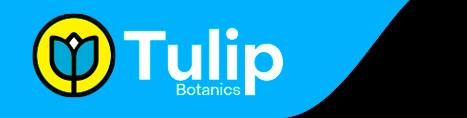 Tulipbotanics header